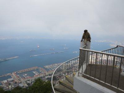Gibraltar_121.jpg