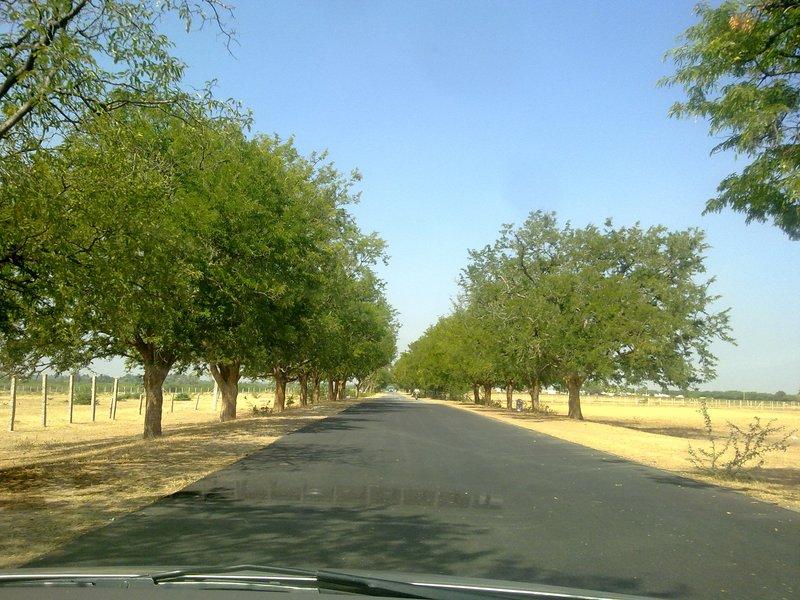 Road to Lepakshi