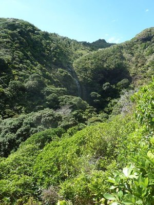 Karekare Waterfall in the Waitakere Ranges Regional Park