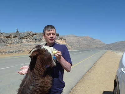The goats at Jebel Shams do like to be fed apple