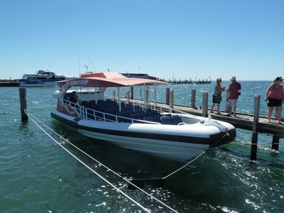 The RIB (Rigid Inflatable Boat) we were on going around Rottnest Island