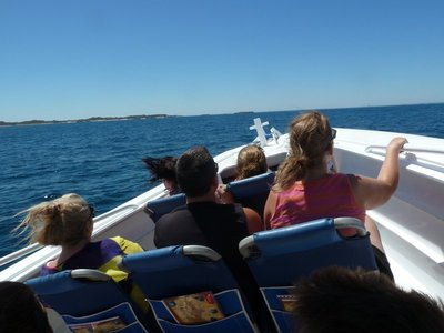 On the eco-tour RIB speeding around Rottnest Island