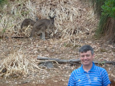 Me with a couple wild kangaroos behind me
