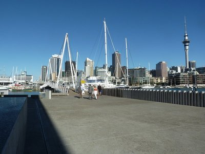 The Wynyard Footbridge across the Viaduct Harbour