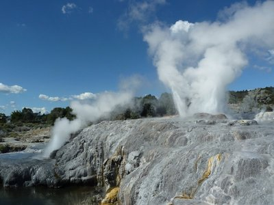 The Prince of Wales Feathers Geyser just below Pohutu is thinking of erupting to
