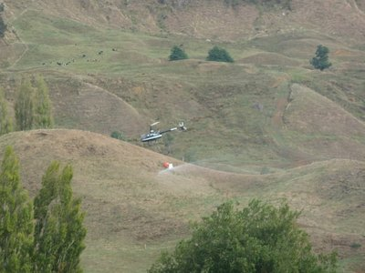 Crop spraying helicopter on the way up to National Park Station