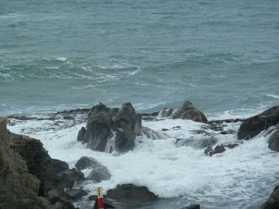 The rocks where the Kaikoura Mountains reach the sea are ideal for seals