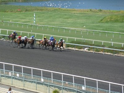 Horses racing around the Hollywood Park Race Track - The final dash for the finishing line, it's looking close!