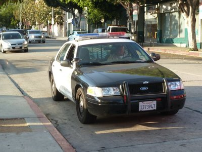 A Police Black-and-White on patrol in Hollywood