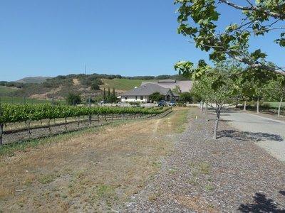 The drive upto the Foley Winery near Santa Barbara