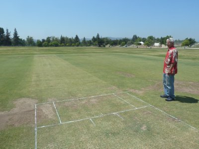 A wicket chalked up ready for a cricket match at the weekend