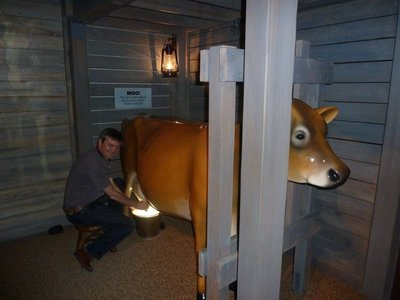 Me milking a cow in 'Destination Colorado' at the History Colorado Center