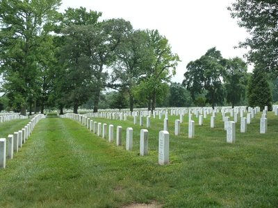 Rows of military graves at the Arlington National Cemetery