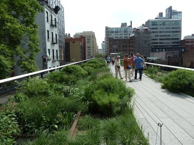 Old rail tracks amongst the wildflowers on the High Line