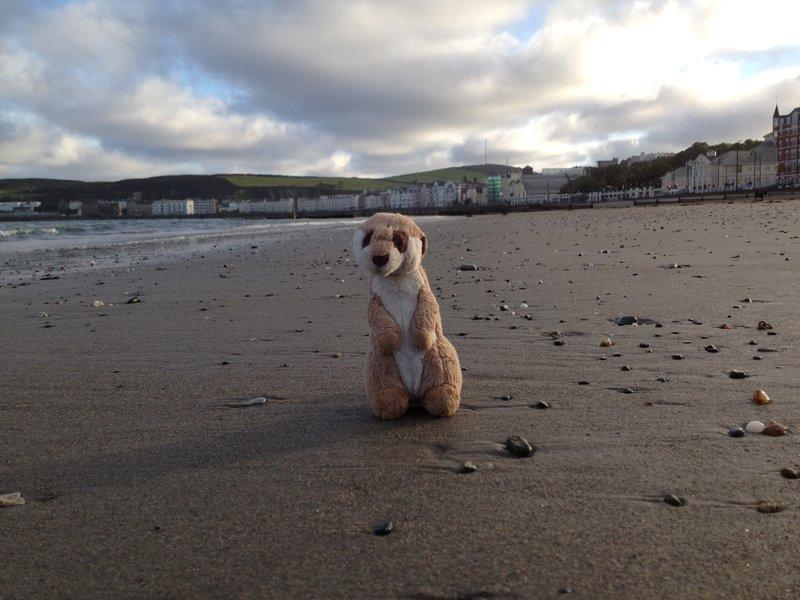 Isle of Man 2012