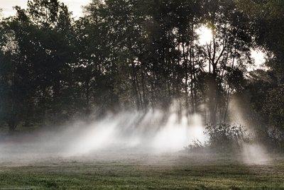 Mists of Järvafältet