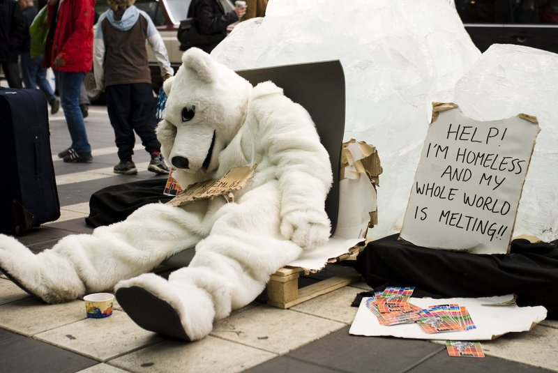 Environment-activist