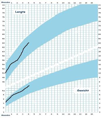 curve daimy 16w