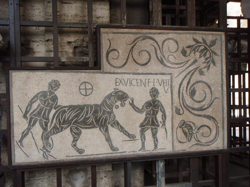 Mosaics from the Domus Aureus