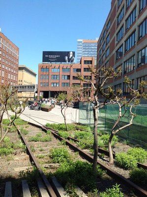 View along The High Line