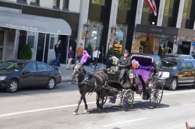 Horse and Carriage near Central Park