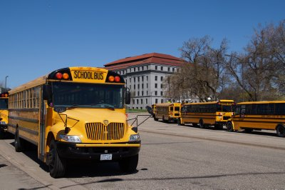 School buses at  The Capitol, Minneapolis