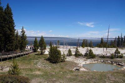 West Thumb Geyser Basin 8