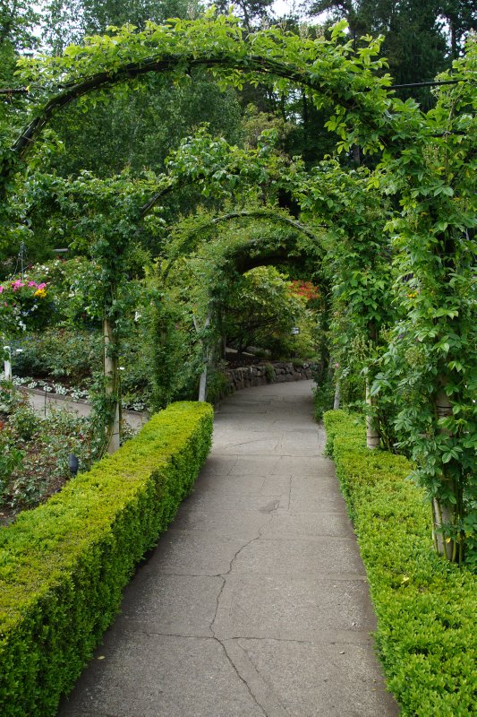 Arbor at The Butchart Gardens