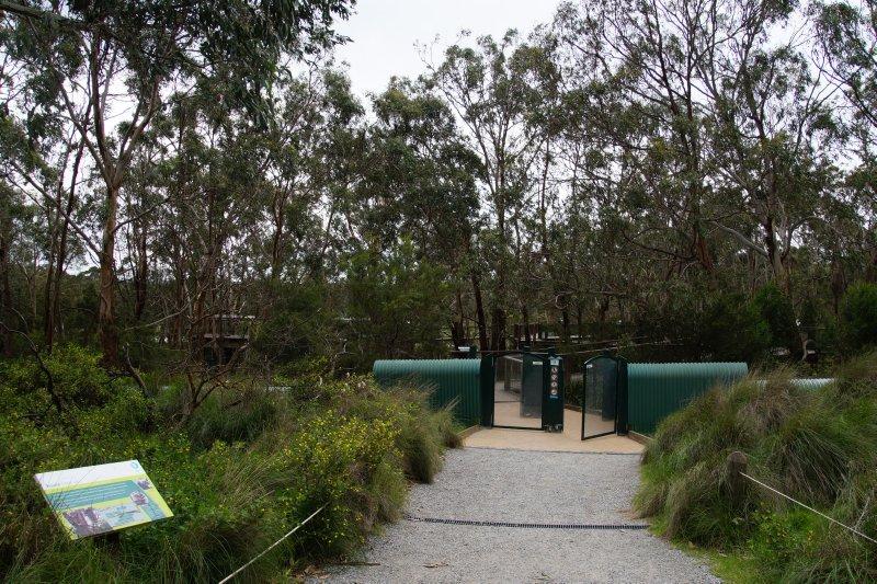 Australian Koala Conservation Centre (2)