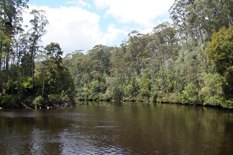 Reflections on the Arthur River