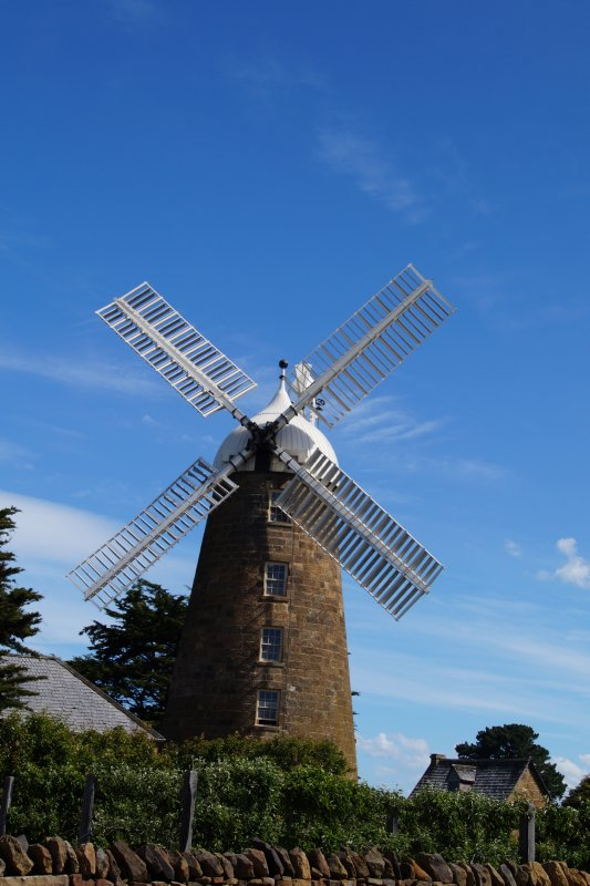Callington Mill at Oatlands