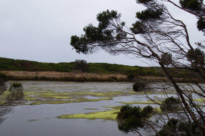 Chain of Lagoons Beach  - lagoon