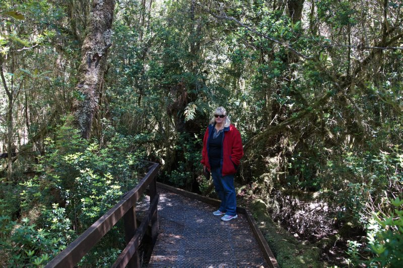 Heritage Walk, Gordon River