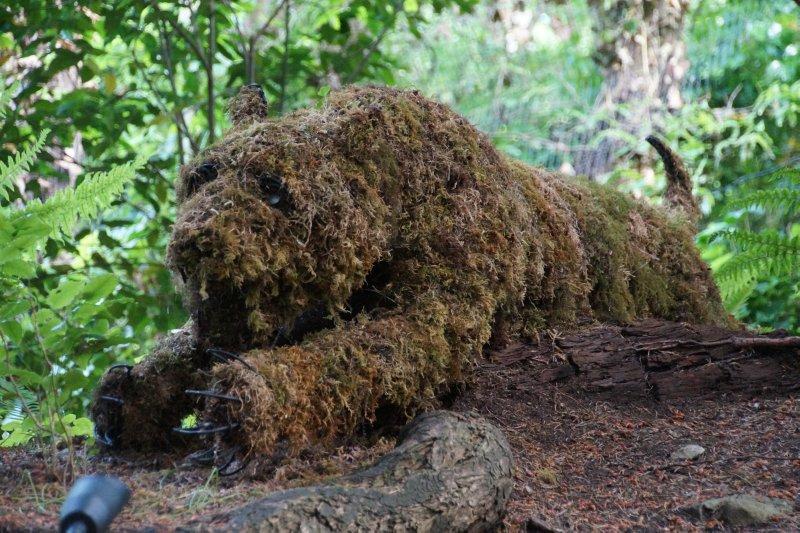 Moss bear
