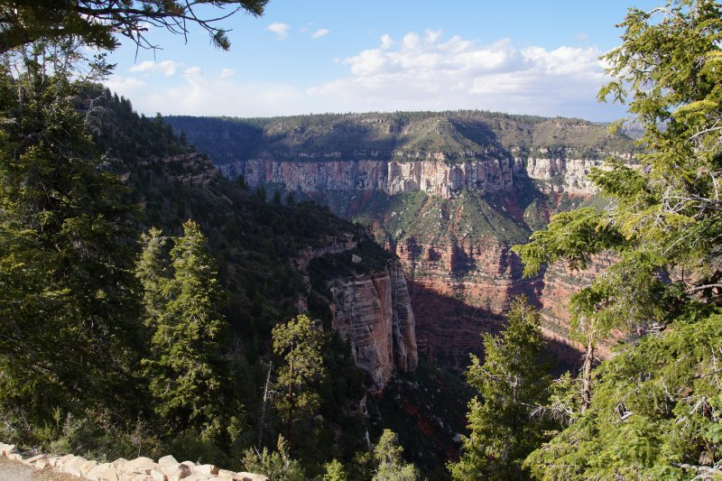 Nature Trail, Bright Angel Point North Rim of the Grand Canyon