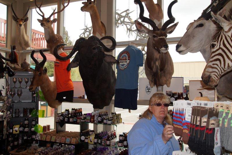 Shop in Jackson