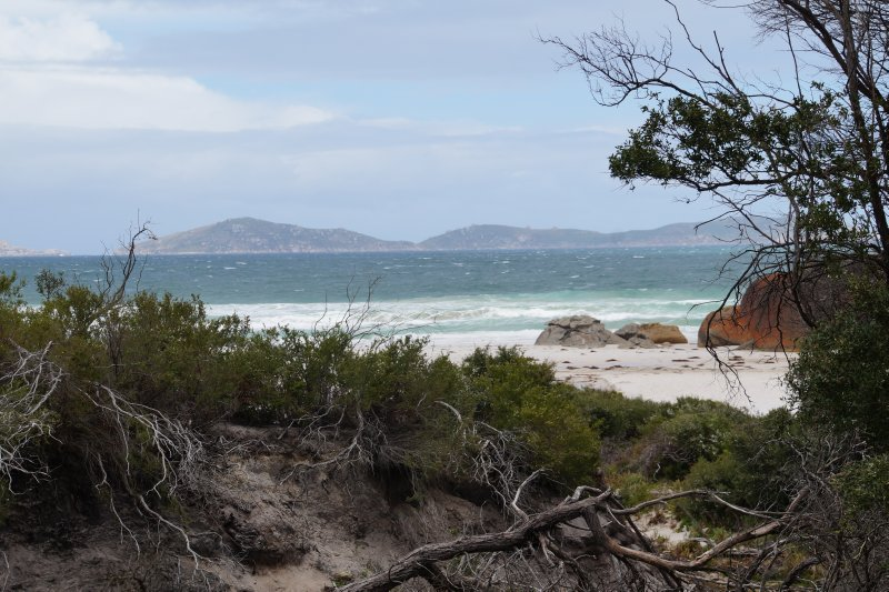 Squeaky Beach (3)