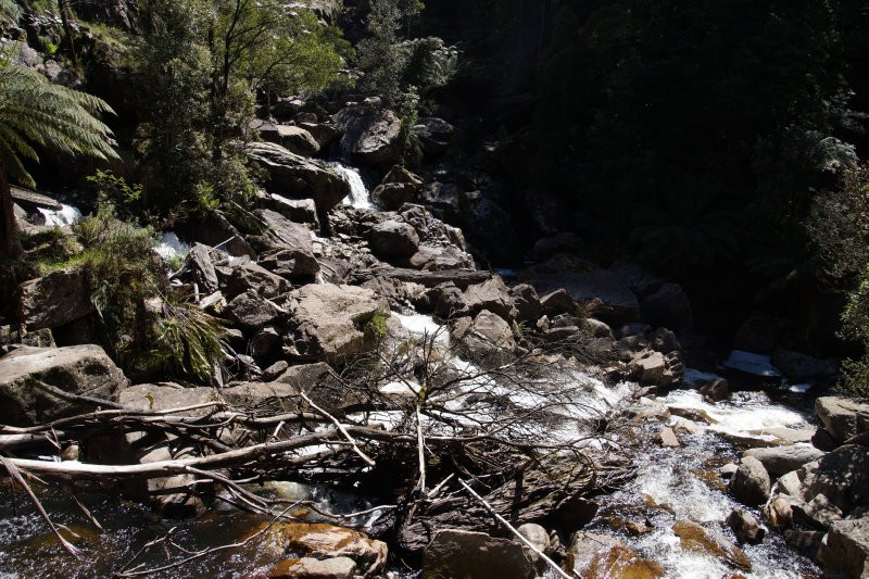 St Columba Falls, Pyengana, 90 metres and one of the tallest in Tasmania