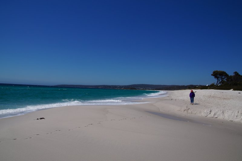 Swimcart Beach
