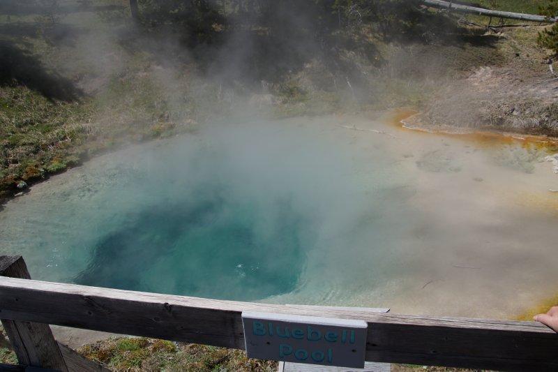 West Thumb Geyser Basin  - Bluebell Pool
