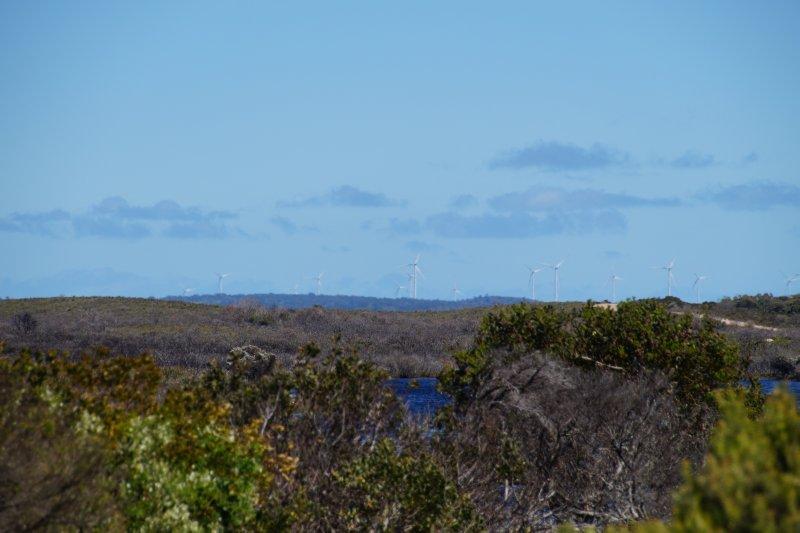 Wind farm near Musselroe Bay