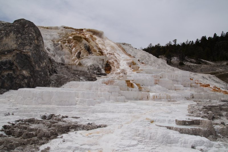 Yellowstone National Park -     walk to Mammoth Hot Springs Terraces - Minerva Terrace
