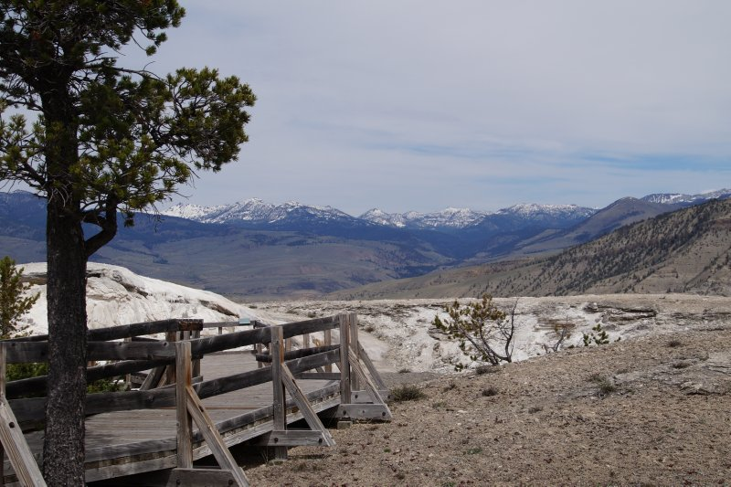 Yellowstone National Park -     walk to Mammoth Hot Springs - view to north