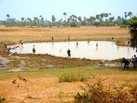 Locals working the fields