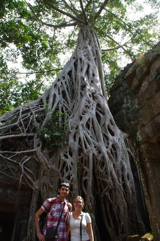 Temple Ta Prohm à Angkor au Cambodge