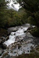 Sur le chemin de Milford Sound
