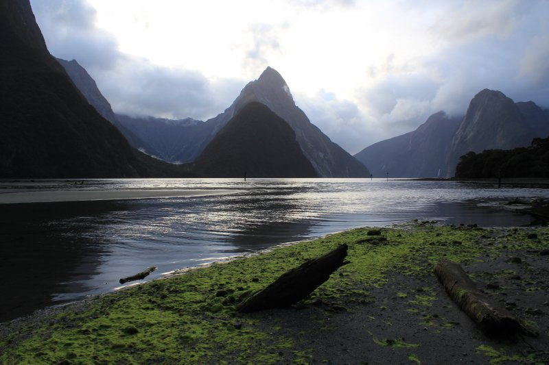 large_Milford_Sound__6_.jpg