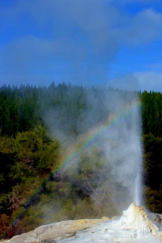 large_Rotorua__6_.jpg