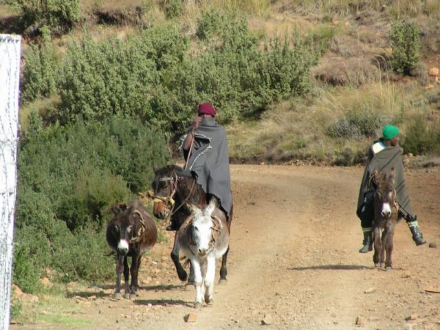 Basotho people at the border