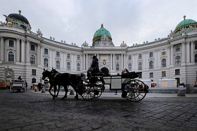 Horse-drawn carriage in front of Hofburg Palace, Vienna